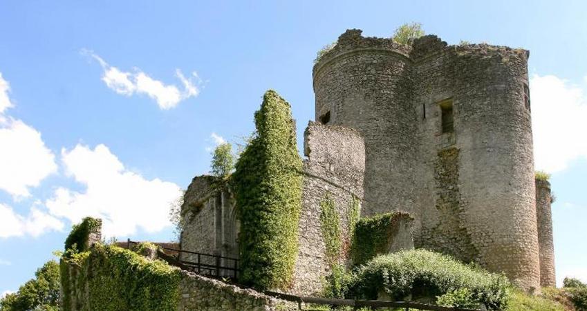 montaigu-le-blin-forteresse